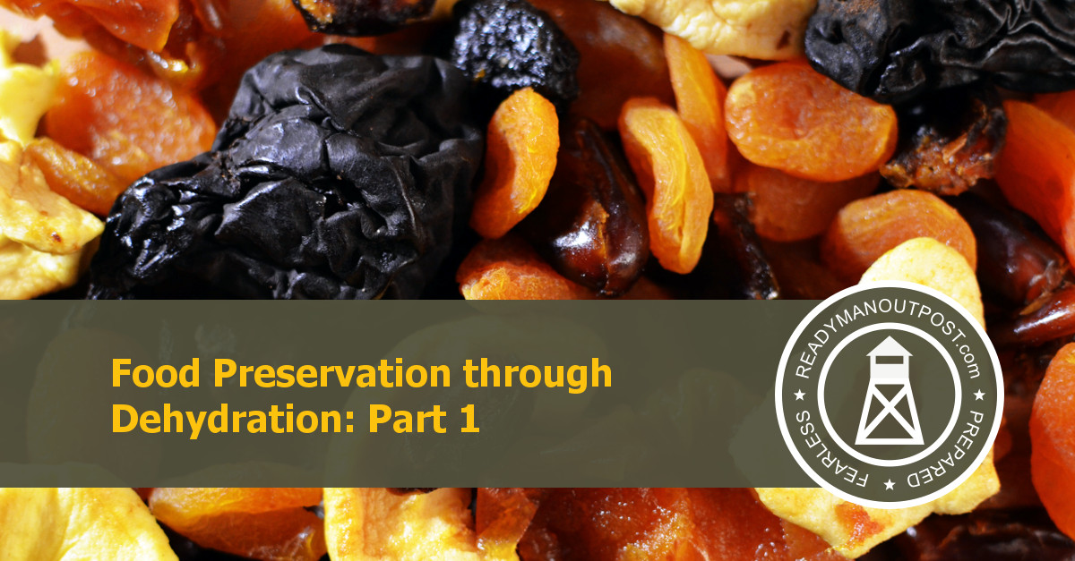 Food Preservation Through Dehydration – Part 1
