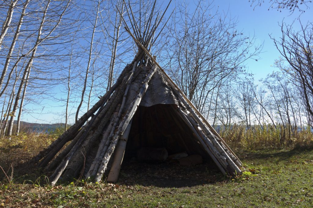 A teepee made of birch bark with deciduous trees in the background.